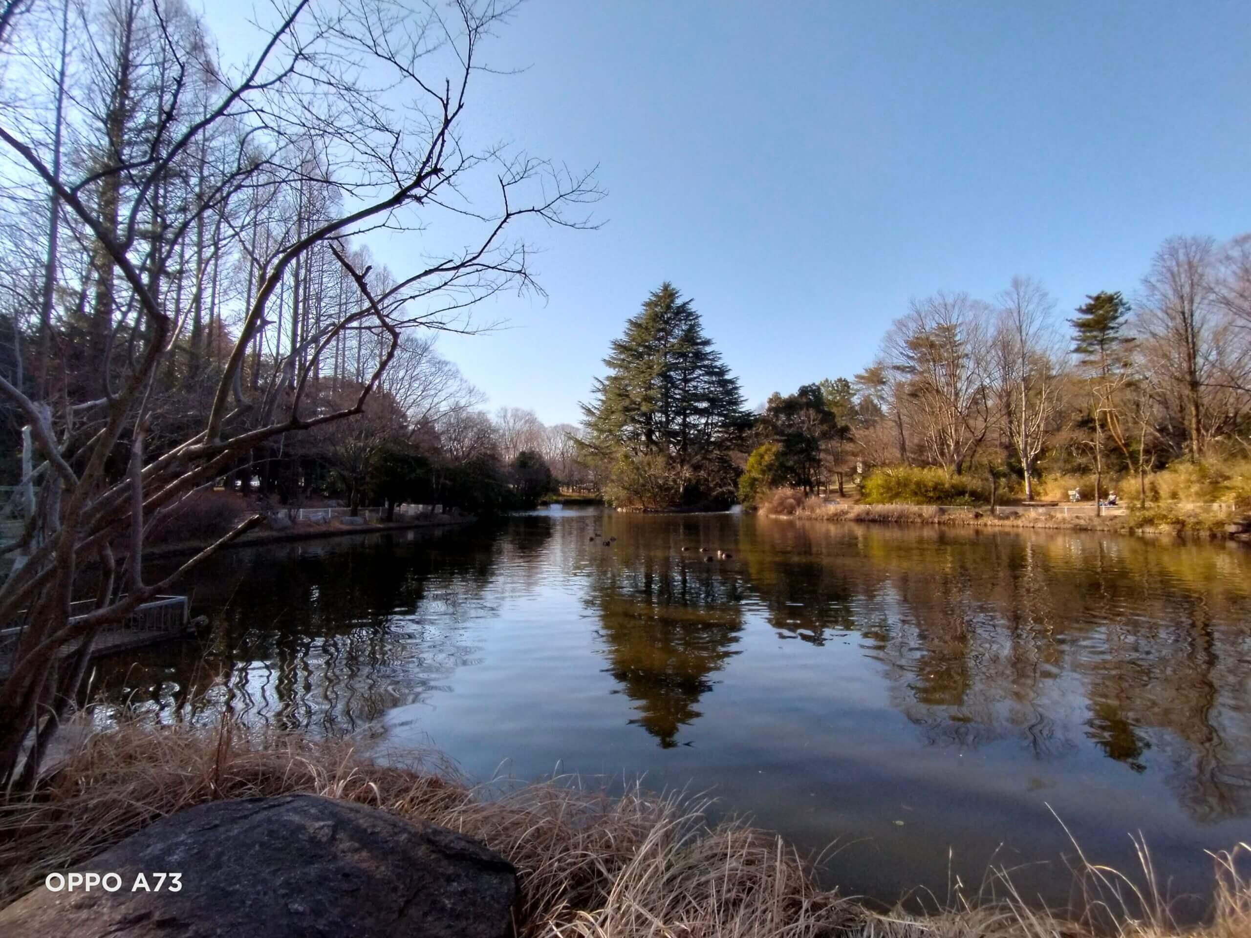 OPPO A73の超広角カメラで撮影した水辺の写真
