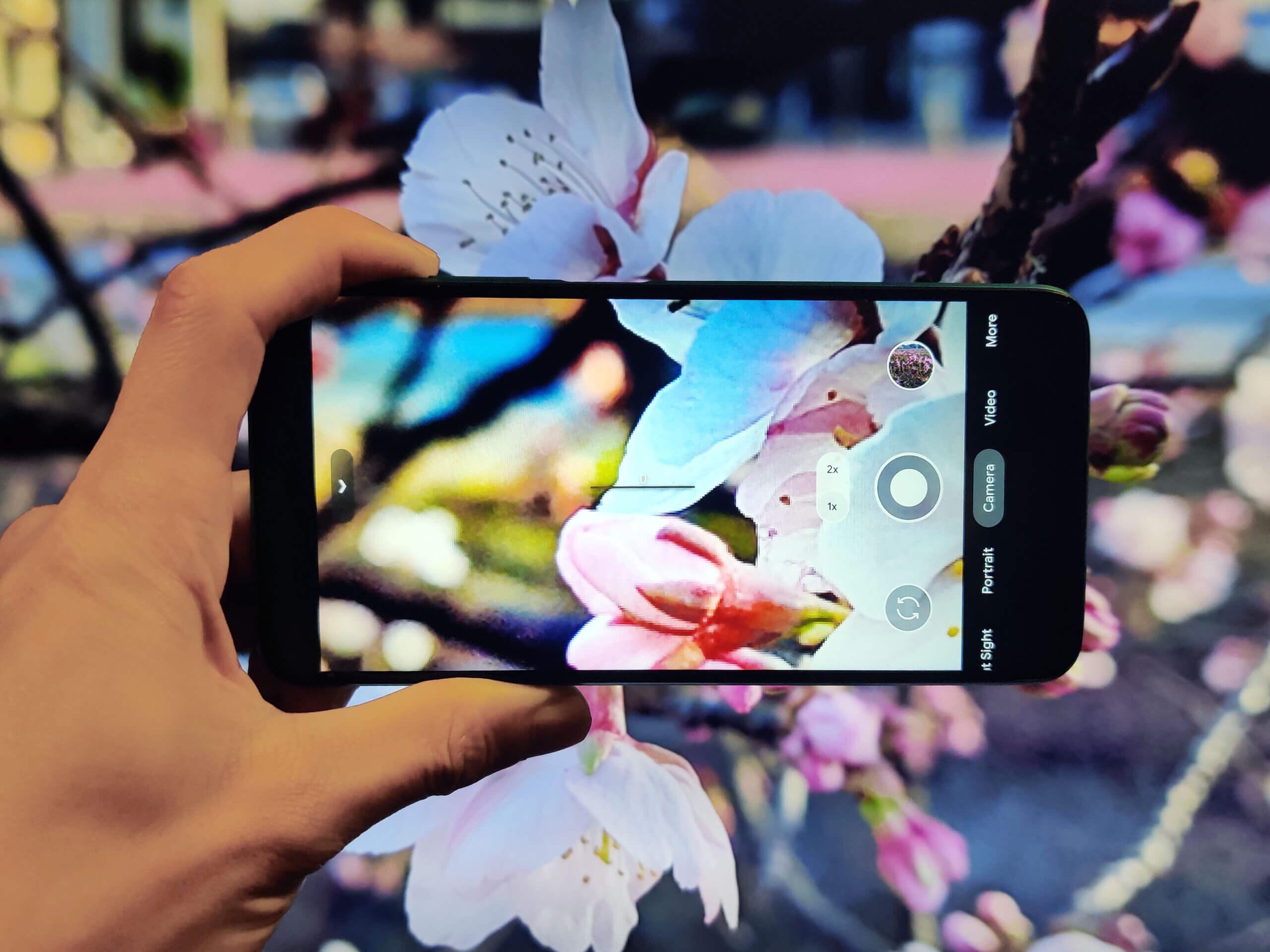 Redmi 9TにGCamを入れて春の景色を撮影
