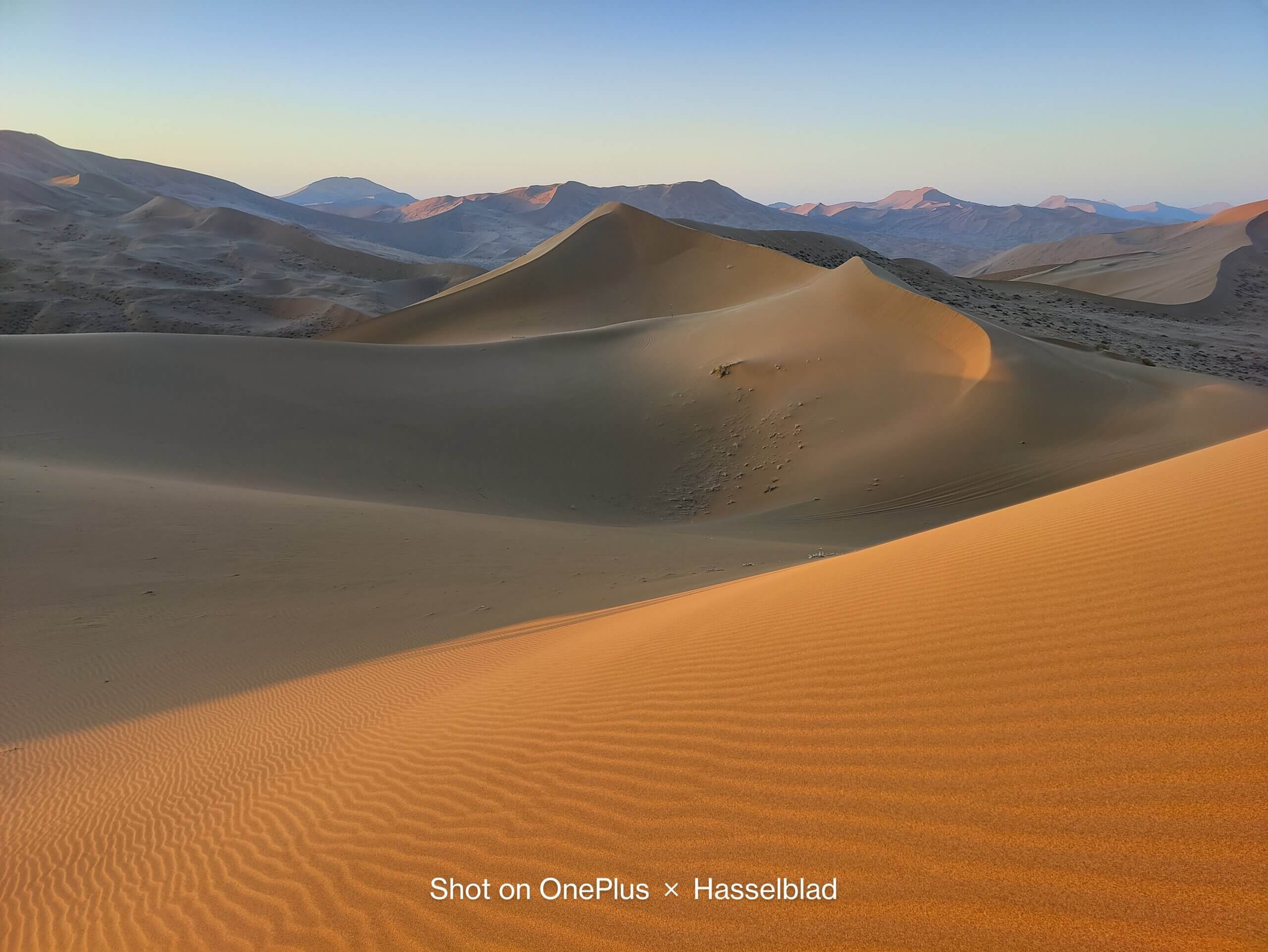 OnePlus 9シリーズで撮影した砂漠の風景