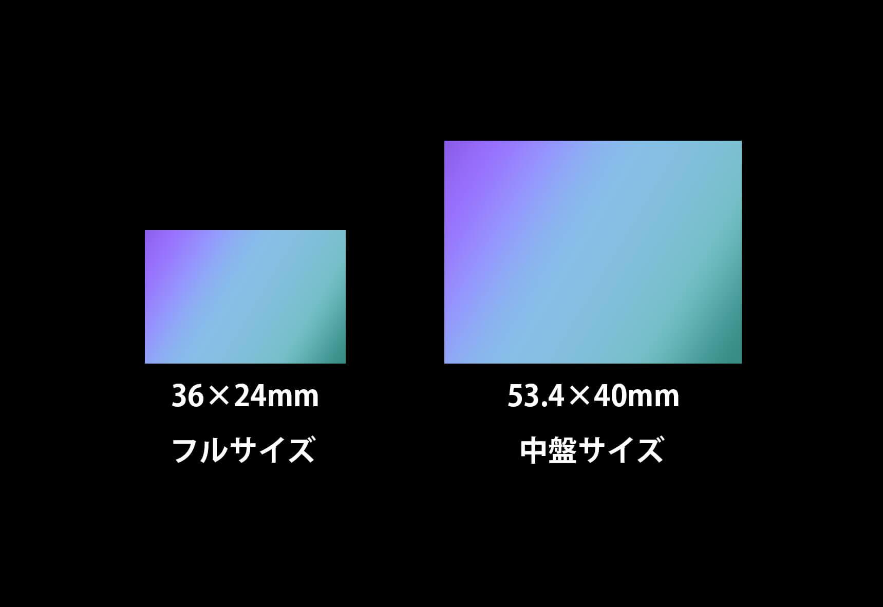 イメージセンサーにはフルサイズの更に上、プロ仕様の中盤サイズが存在する。